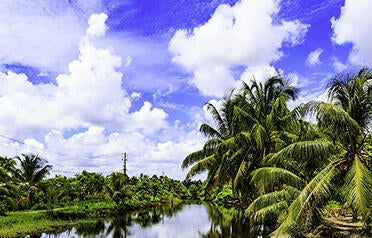 Surinam